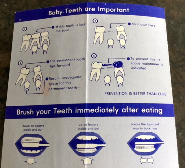 Murphy the Molar on baby teeth and toothbrushing